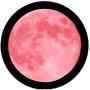 It's a Full Pink Moon!