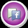 Facebook Page Fans 1